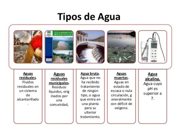 microbiologa-del-agua-4-638
