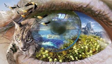 ojo_naturaleza_web