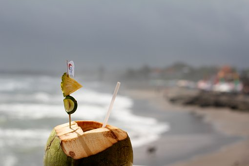 coconut-2791979__340